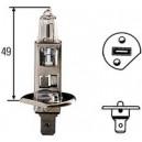 Ampoule, projecteur principal Hella 12 V H1 55 W